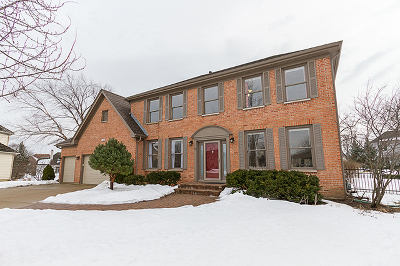 Schaumburg Single Family Home For Sale: 106 Lucre Court