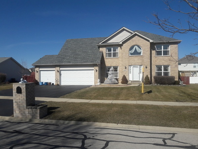 Plainfield Single Family Home New: 24842 Fescue Drive