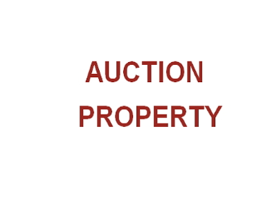 Park Forest Single Family Home Auction: 425 Indiana Street