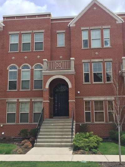 Morton Grove IL Condo/Townhouse New: $385,000
