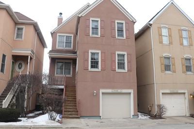 Chicago IL Condo/Townhouse New: $550,000