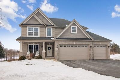 Oswego Single Family Home New: 127 Pineridge Drive