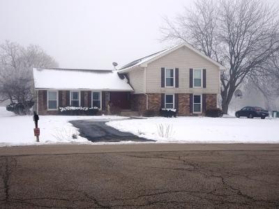 St. Charles Single Family Home New: 5n549 Jens Jensen Lane