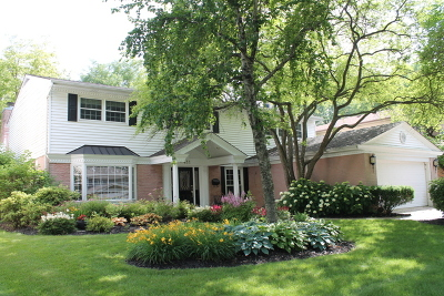 Arlington Heights Single Family Home For Sale: 411 West Noyes Street