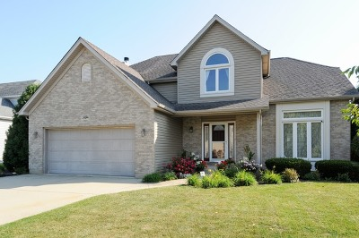 Plainfield Single Family Home New: 24844 Ambrose Road
