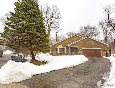Olympia Fields Single Family Home For Sale: 1050 Elliot Court
