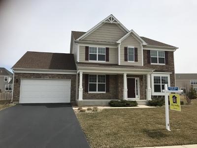 Lisle Single Family Home For Sale: 5927 Sanctuary Street