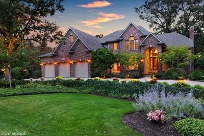 Naperville IL Single Family Home New: $1,245,900