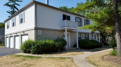 Palatine Condo/Townhouse Re-Activated: 2101 North Ginger Circle #15D
