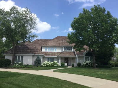 Burr Ridge IL Single Family Home New: $1,299,000