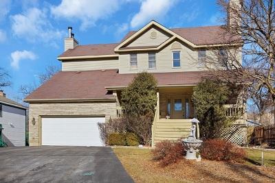 Lake Villa, Lindenhurst Single Family Home New