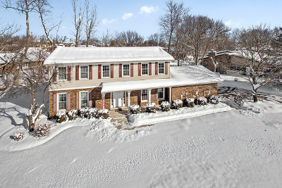 Homer Glen Single Family Home New: 13658 West Meath Drive