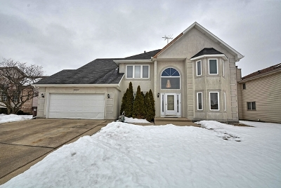 Richton Park Single Family Home New: 22857 Millard Avenue