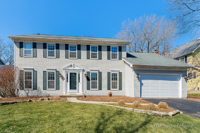 Du Page County Single Family Home New: 162 Hedge Court