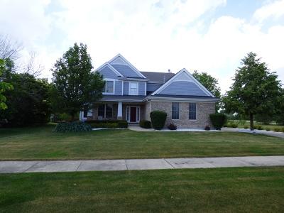 Frankfort Single Family Home New: 21366 Breton Road