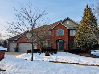 Orland Park Single Family Home New: 10548 Great Egret Drive
