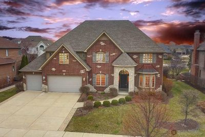 Naperville Single Family Home New: 507 Eagle Brook Lane