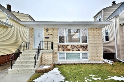 Chicago Single Family Home New: 3717 North Newcastle Avenue