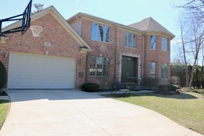 Highland Park Single Family Home For Sale: 921 Ridge Road