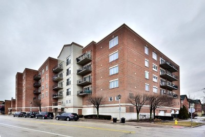 Brookfield Condo/Townhouse New: 8822 West Brookfield Avenue #607