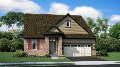 St. Charles Single Family Home New: 220 Hamilton Road