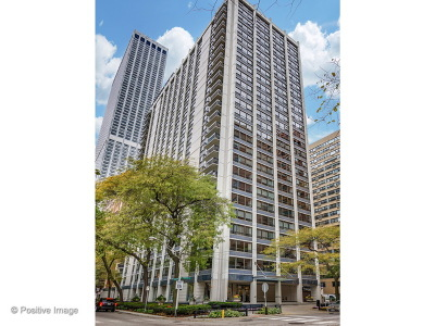 Chicago Condo/Townhouse New: 222 East Pearson Street #2302