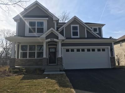 Arlington Heights Single Family Home For Sale: 817 East Davis Street