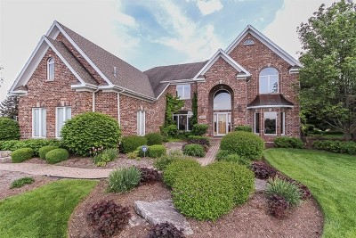 St. Charles Single Family Home New: 38w509 Golfview Court