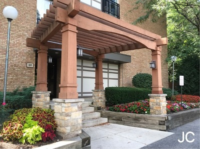 Lisle Condo/Townhouse For Sale: 1811 Four Lakes Avenue #1J