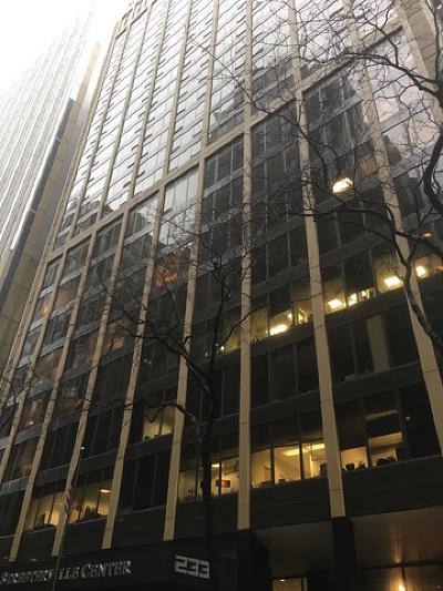 Chicago Rental For Rent: 233 East Erie Street #1006