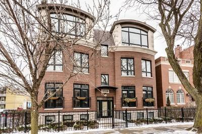 Chicago Condo/Townhouse New: 2719 North Paulina Street #1N