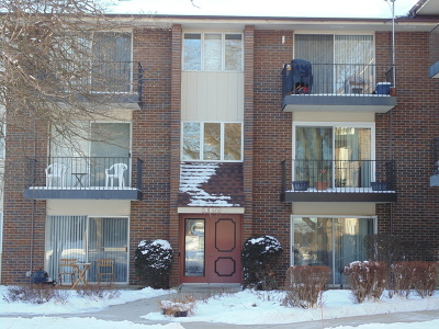 Naperville Condo/Townhouse New: 5s070 Pebblewood Lane #G11