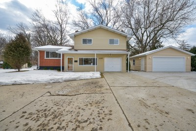 Downers Grove Single Family Home New: 1137 55th Street
