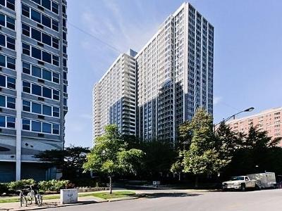 Chicago Condo/Townhouse New: 4250 North Marine Drive #715