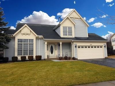 Lake Zurich Single Family Home For Sale: 754 Warwick Lane