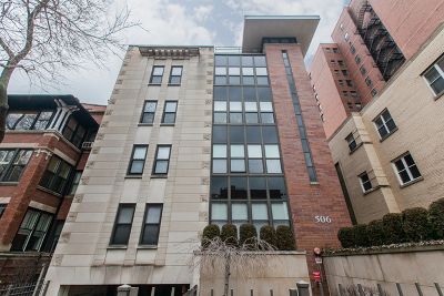 Chicago Condo/Townhouse New: 506 West Roscoe Street #202