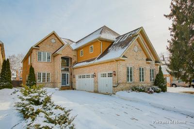 Naperville Single Family Home New: 836 North Ellsworth Street