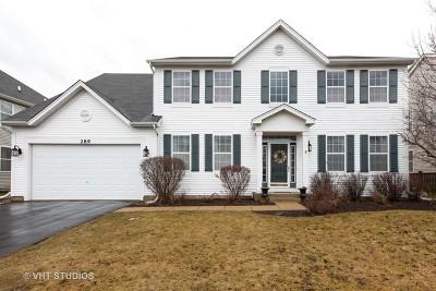 Oswego Single Family Home New: 289 Bluegrass Parkway