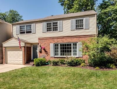 Chicago Single Family Home New: 10810 South Washtenaw Avenue