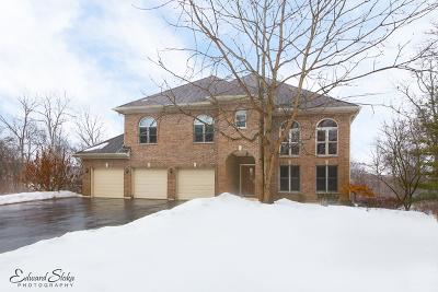 Elgin IL Single Family Home New: $425,000