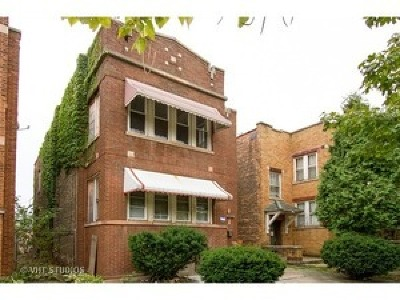 Chicago Multi Family Home New: 6635 South Maplewood Avenue