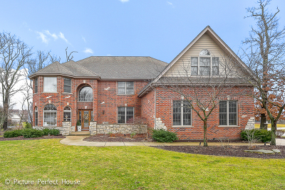 Minooka, Channahon Single Family Home For Sale: 26835 South Highland Court