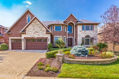 Naperville IL Single Family Home New: $1,100,000