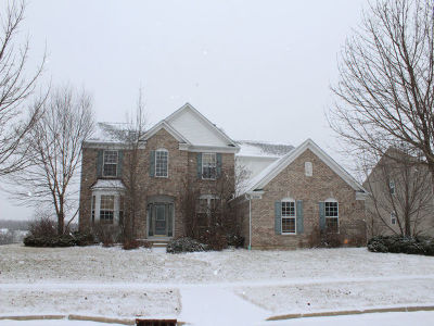 West Dundee Single Family Home For Sale: 2804 Carrington Drive