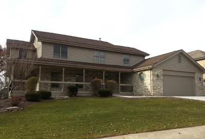 Orland Park Single Family Home New: 16952 Blue Heron Drive