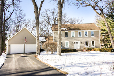 Hampshire Single Family Home New: 44w930 Deerpath Lane