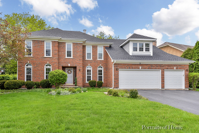 Wheaton Single Family Home For Sale: 74 Hawkins Circle