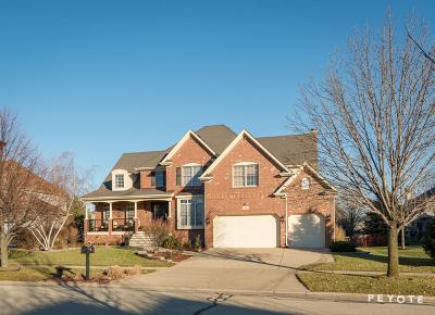 Naperville IL Single Family Home New: $689,000