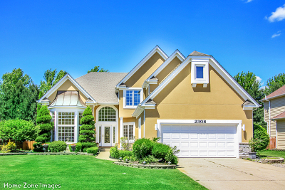 Naperville IL Single Family Home New: $535,000