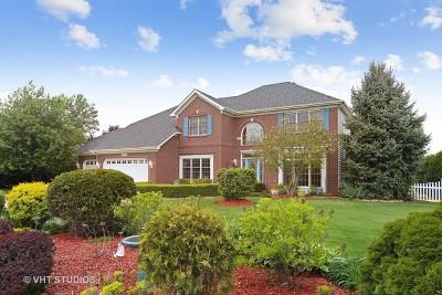 Naperville IL Single Family Home New: $585,000